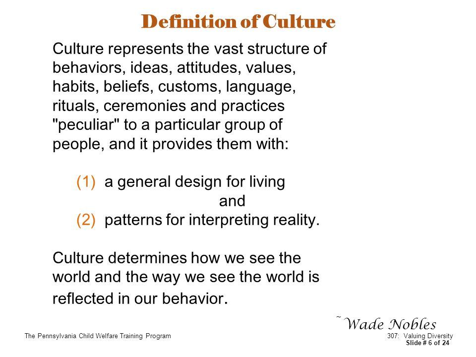 AGENDA THE CONCEPT OF CULTURAL DIVERSITY Culture ...