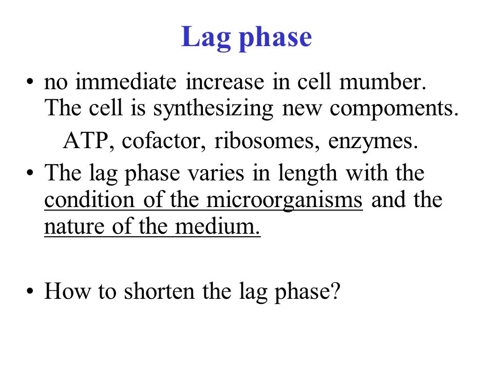 Lag phase no immediate increase in cell mumber. The cell is synthesizing new compoments. ATP, cofactor, ribosomes, enzymes.