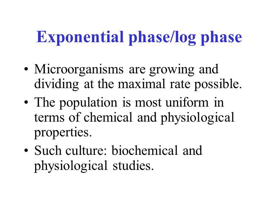 Exponential phase/log phase