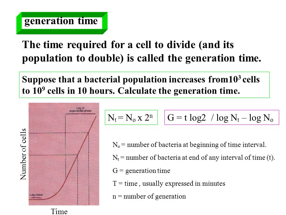 generation time The time required for a cell to divide (and its population to double) is called the generation time.