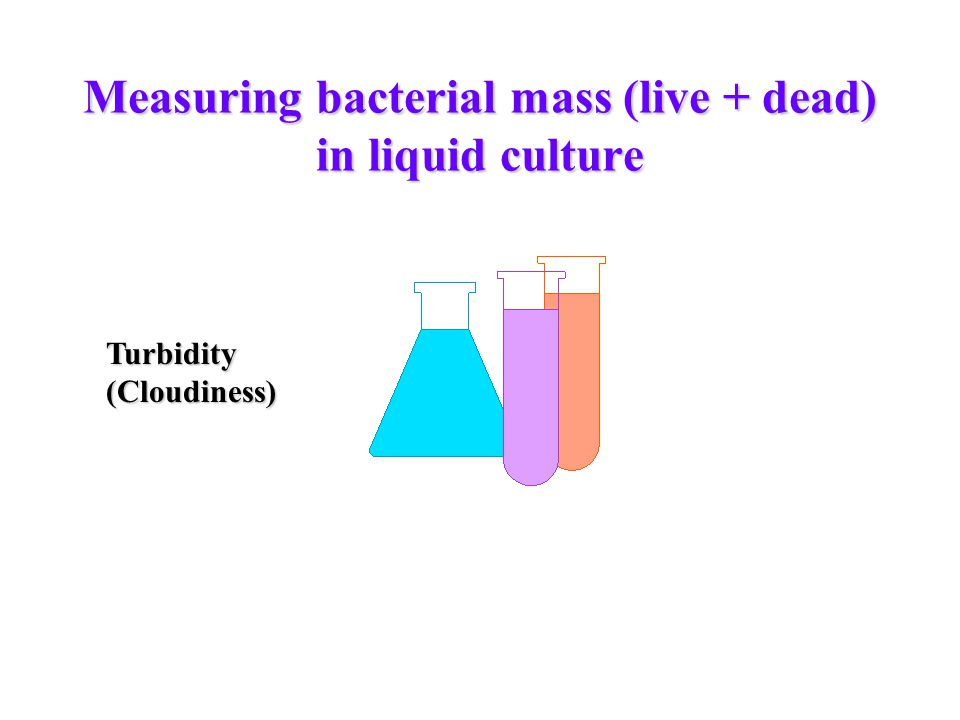 Measuring bacterial mass (live + dead) in liquid culture