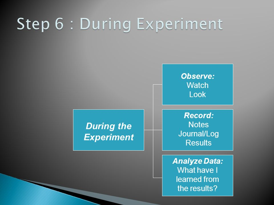 Step 6 : During Experiment