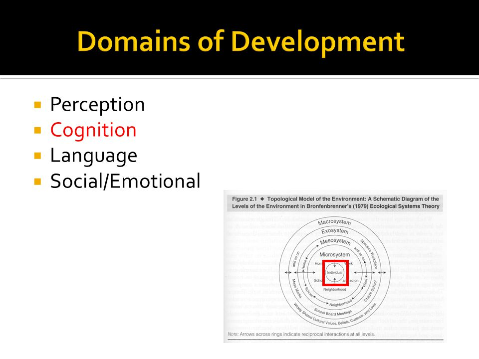 The Three Domains of Development