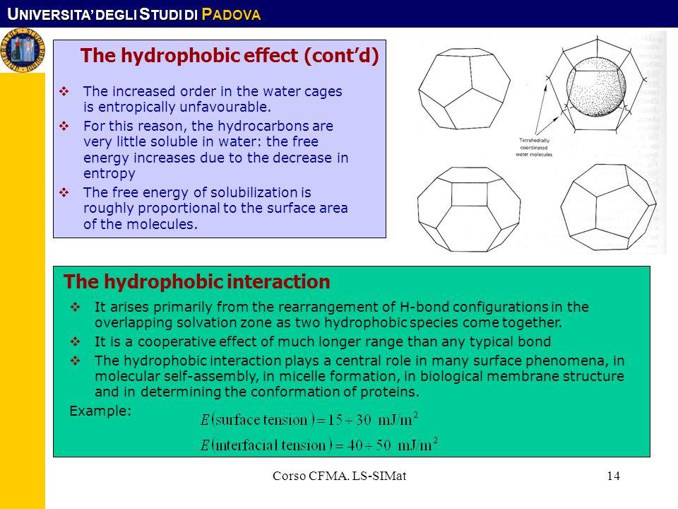 The hydrophobic effect (cont'd)