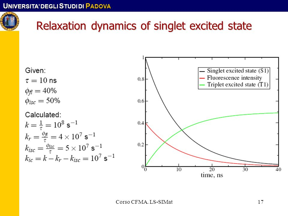 Relaxation dynamics of singlet excited state