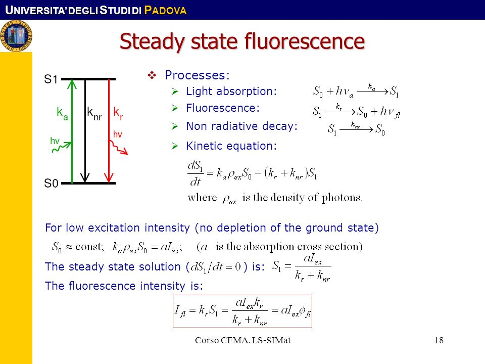 Steady state fluorescence