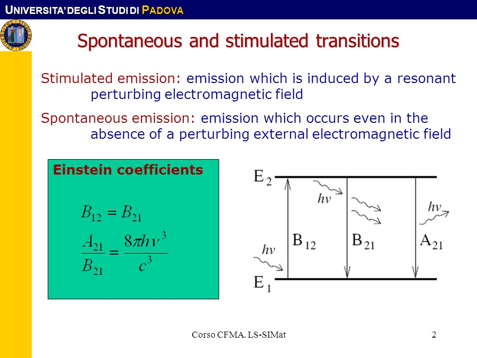 Spontaneous and stimulated transitions