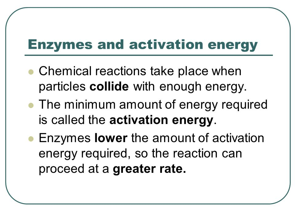 Enzymes activation energy worksheet