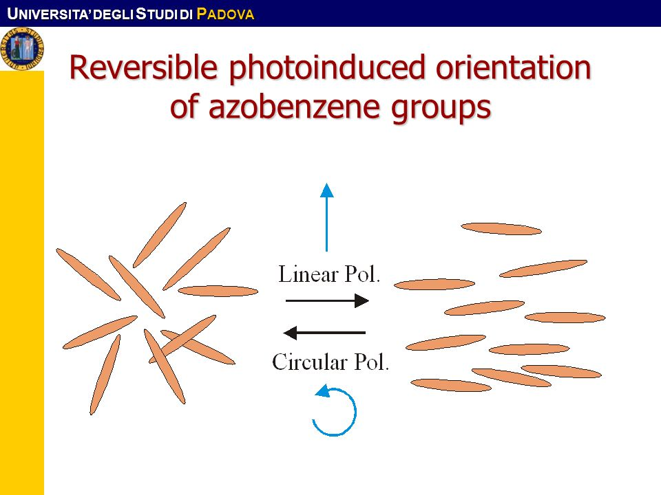Reversible photoinduced orientation of azobenzene groups