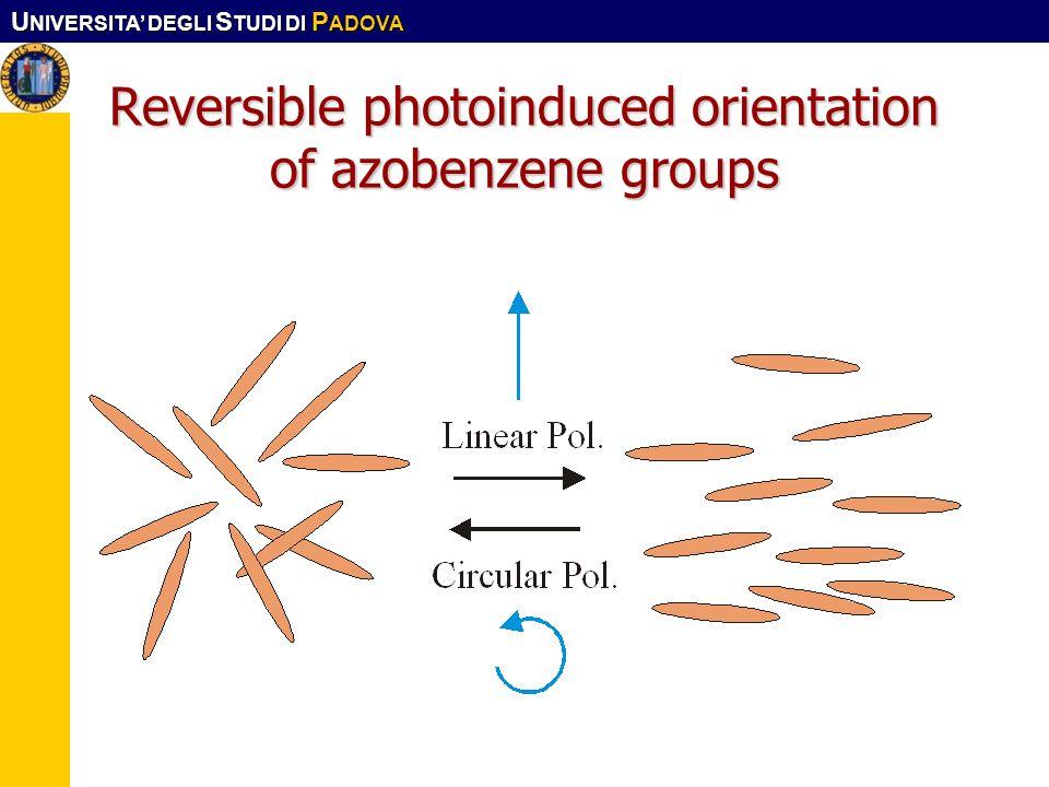 Reversible photoinduced orientation of azobenzene groups