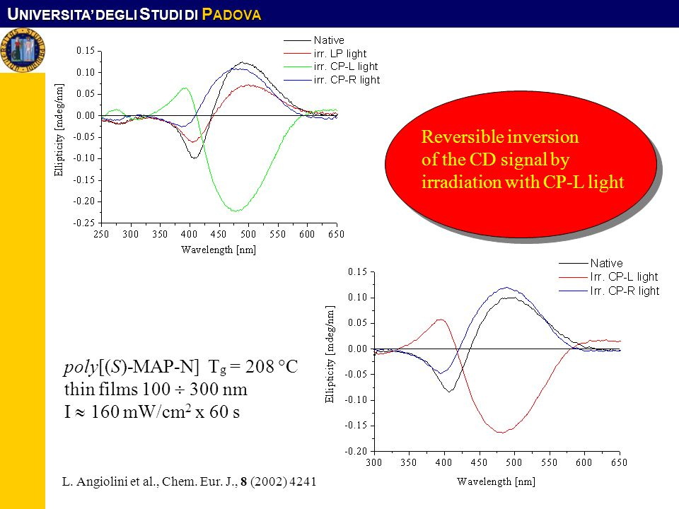 irradiation with CP-L light