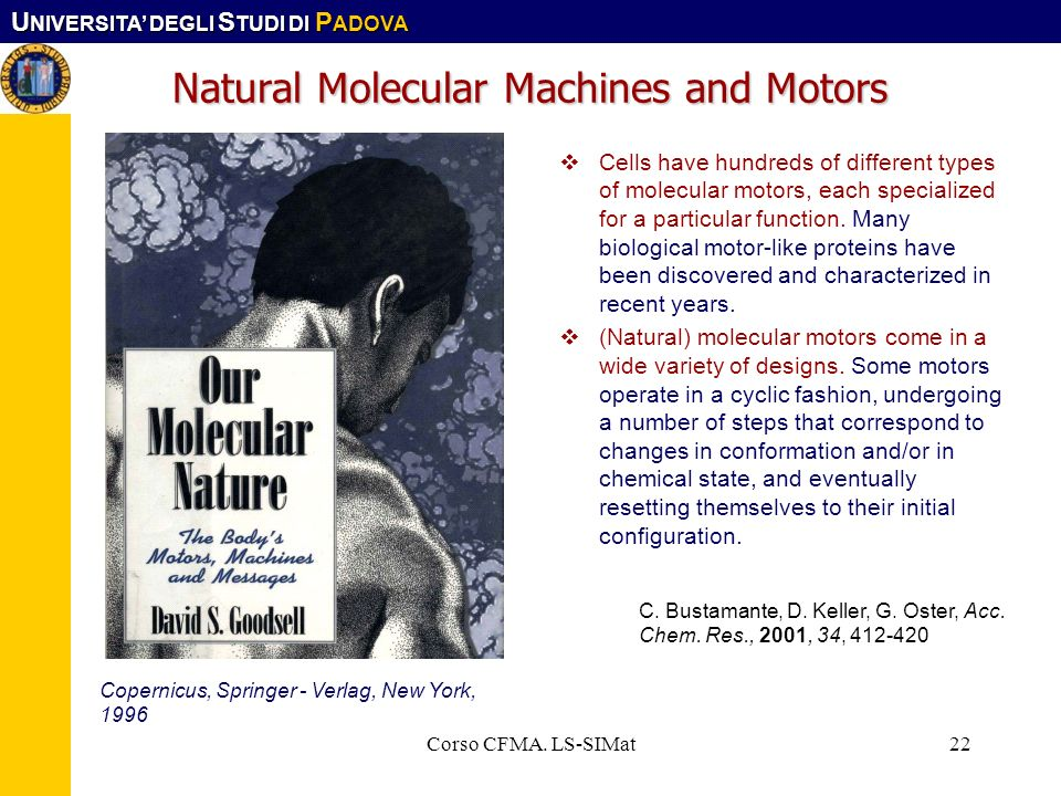 Natural Molecular Machines and Motors