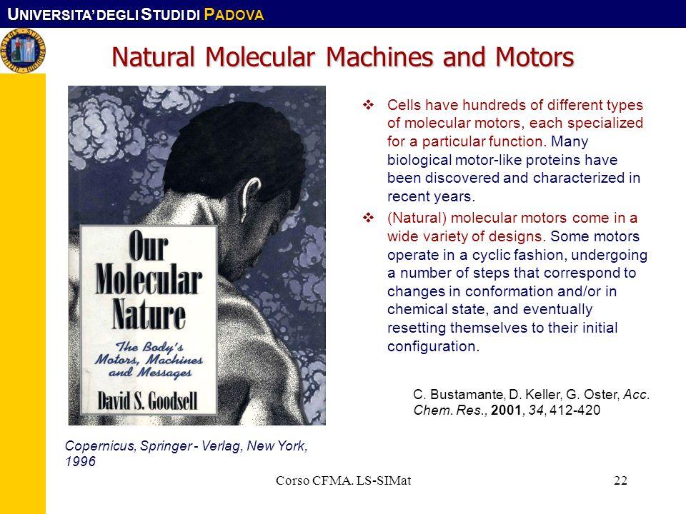 Natural Molecular Machines and Motors