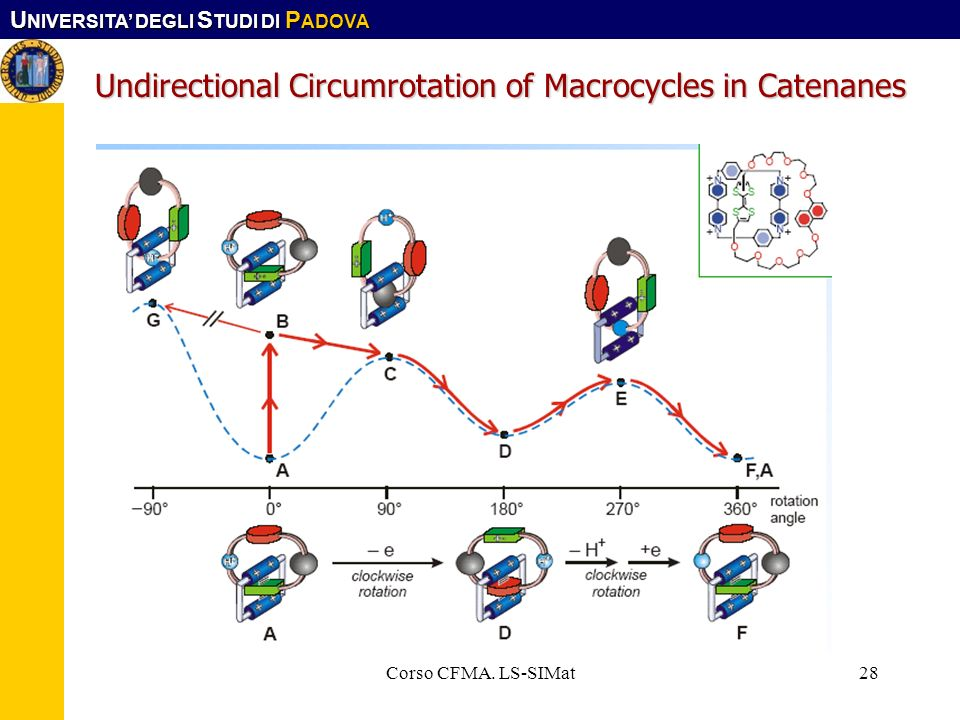 Undirectional Circumrotation of Macrocycles in Catenanes