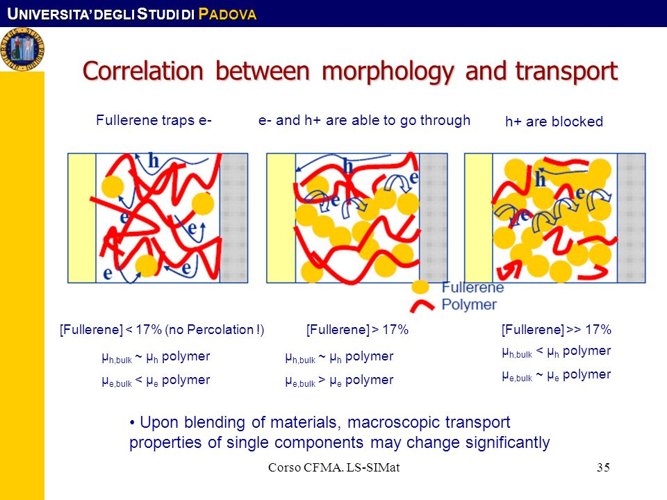 Correlation between morphology and transport