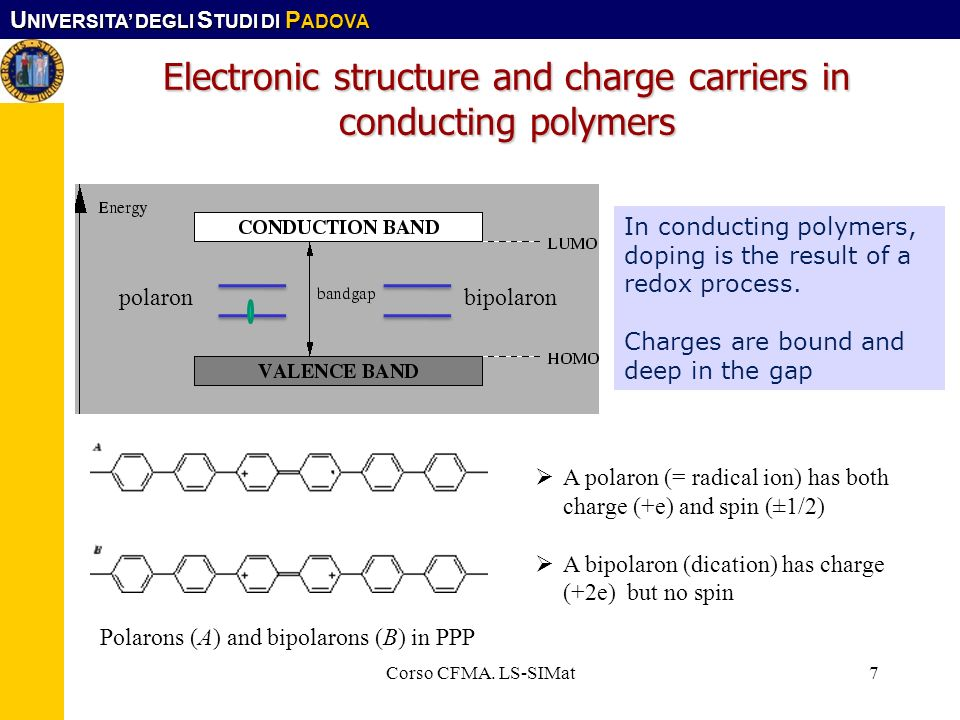 Electronic structure and charge carriers in conducting polymers