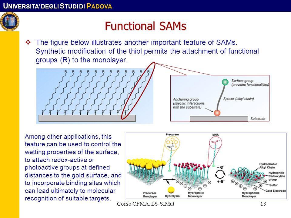 Functional SAMs