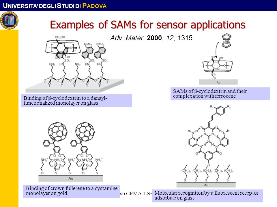 Examples of SAMs for sensor applications