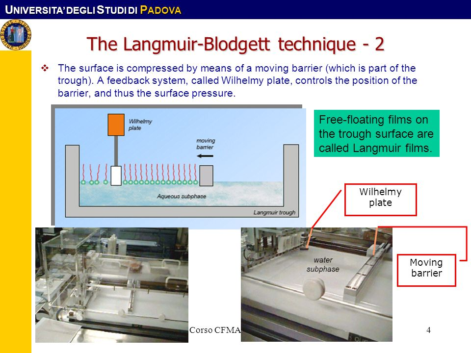 The Langmuir-Blodgett technique - 2