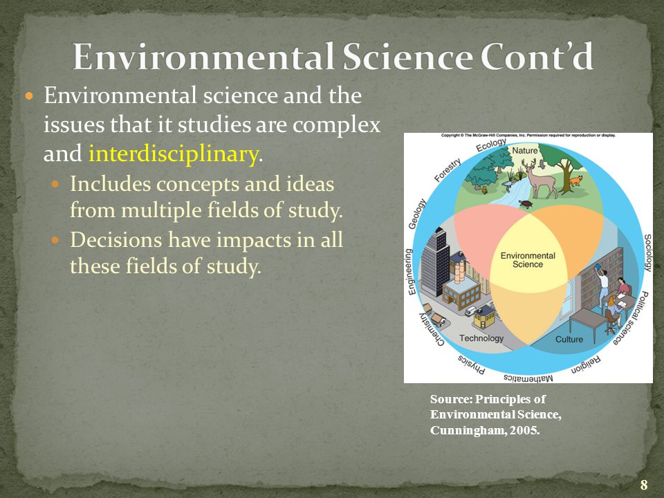 an analysis of the environmental issues and the principles of deforestation Environmental ethics views on deforestation  of environmental problems  modern utilitarian's- cost benefit analysis is the forest worth more in the long run if .