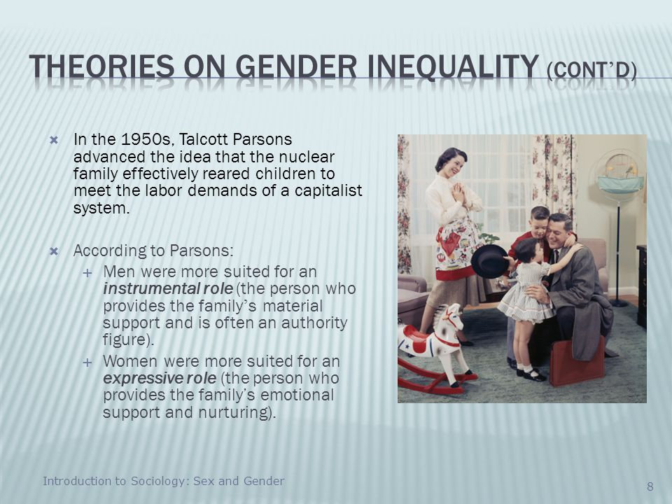 Theories on Gender Inequality (cont'd)