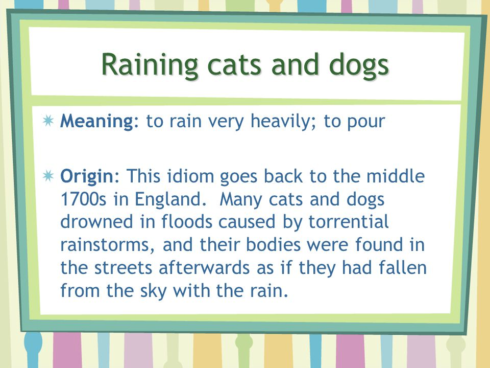Raining Cats And Dogs Idiom Sentence