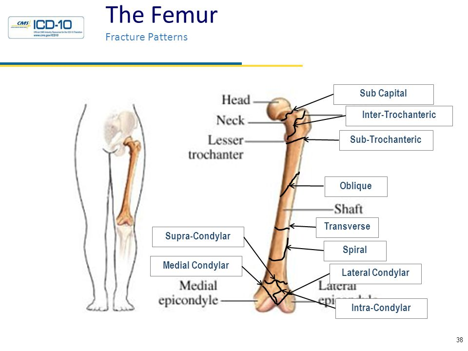 Icd 10 For Knee Injury | CINEMAS 93