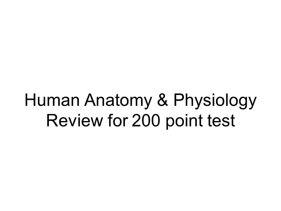 Human Anatomy & Physiology Review for 200 point test - ppt video ...