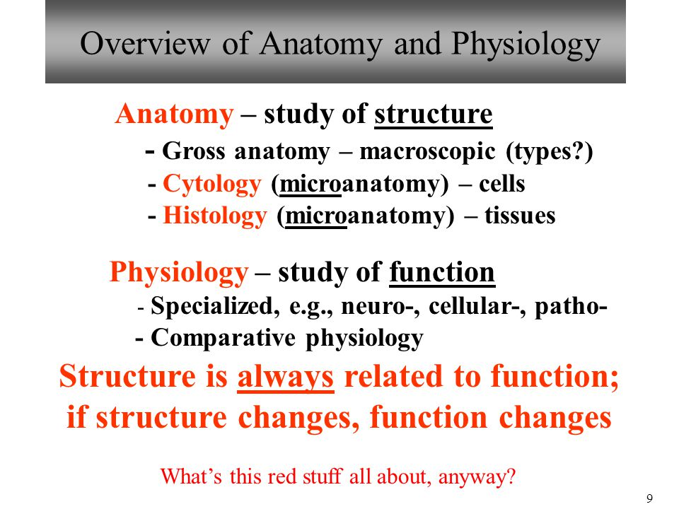a complete overview of anatomy and physiology Anatomy and physiology coloring workbook: a complete study guide, 12th edition.