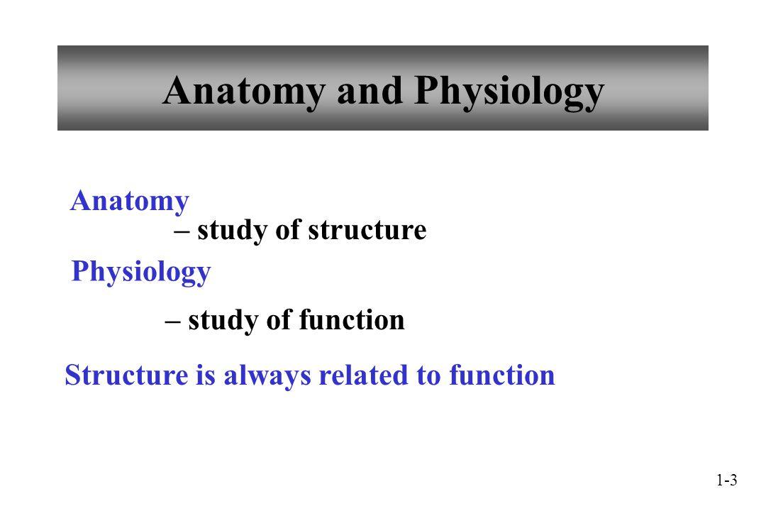 Großzügig Holes Anatomy And Physiology 14th Edition Fotos ...
