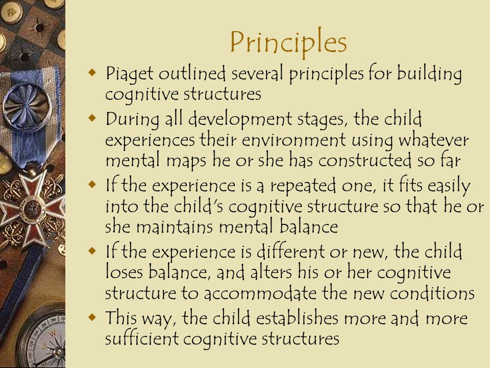 Principles Piaget outlined several principles for building cognitive structures.