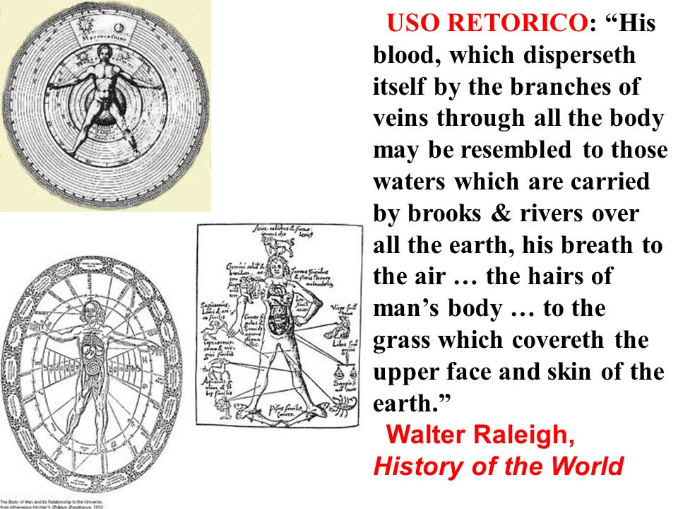 USO RETORICO: His blood, which disperseth itself by the branches of veins through all the body may be resembled to those waters which are carried by brooks & rivers over all the earth, his breath to the air … the hairs of man's body … to the grass which covereth the upper face and skin of the earth.