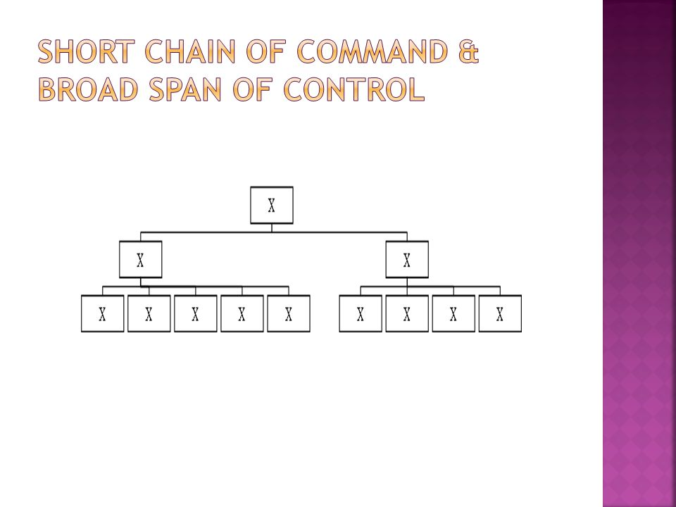SHORT chain of command & BROAD span of control