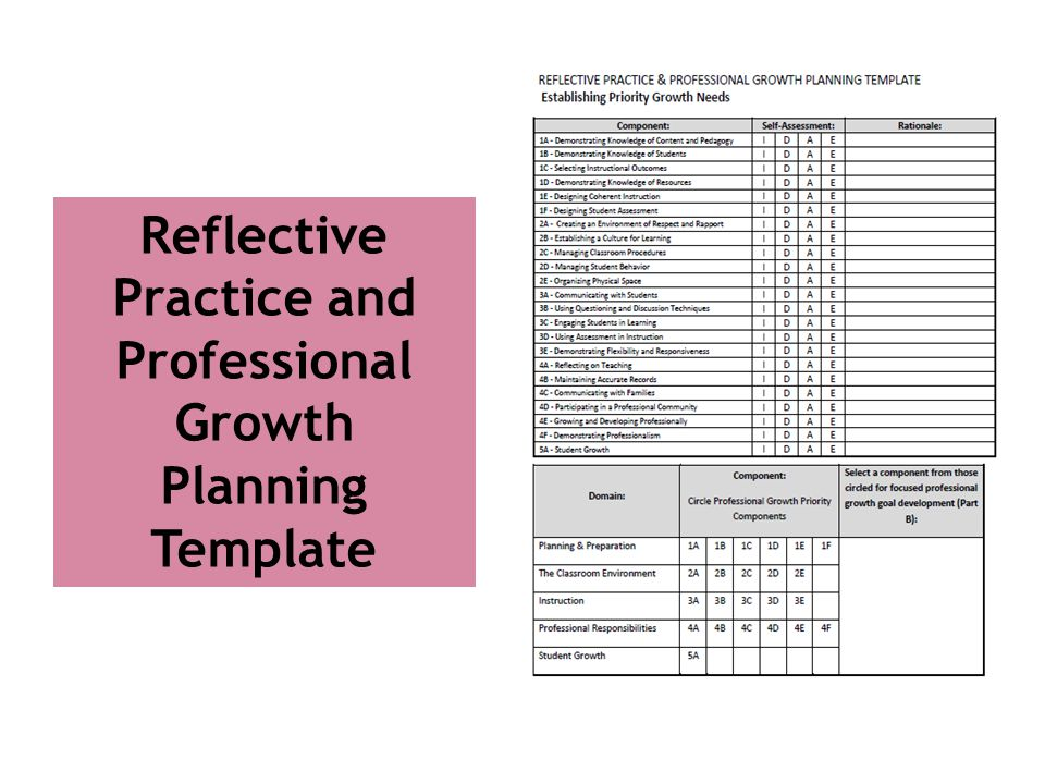 Reflective Practice and Professional Growth Planning Template