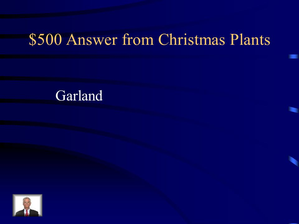$500 Answer from Christmas Plants