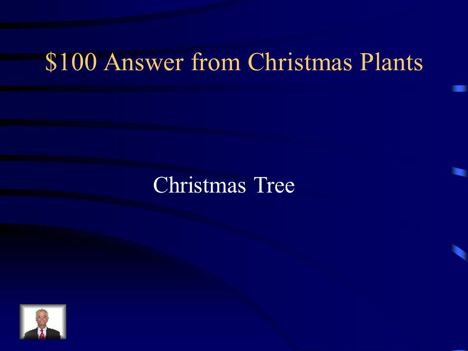 $100 Answer from Christmas Plants