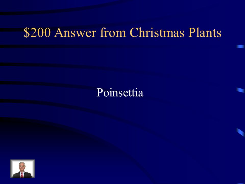 $200 Answer from Christmas Plants