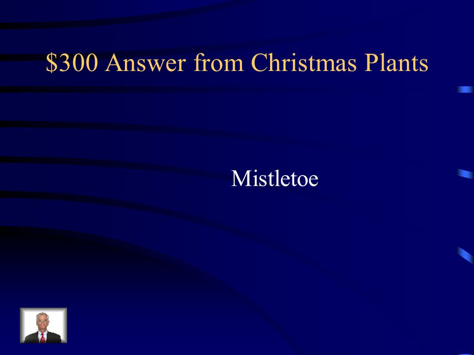 $300 Answer from Christmas Plants