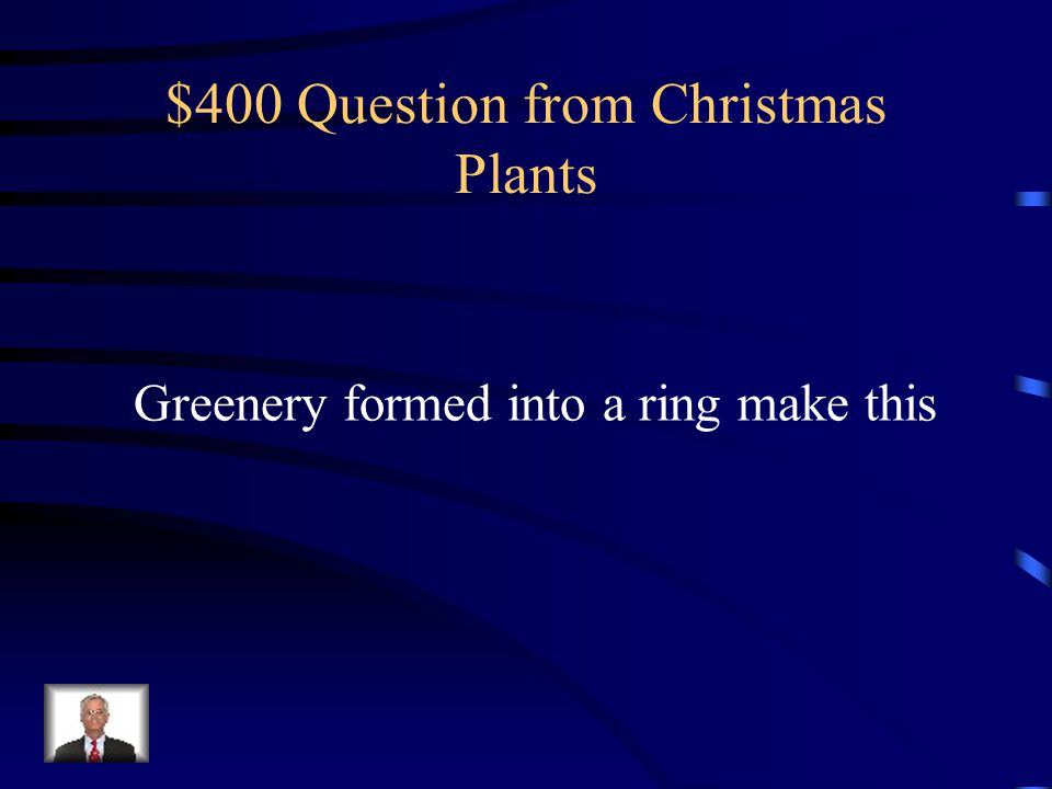 $400 Question from Christmas Plants