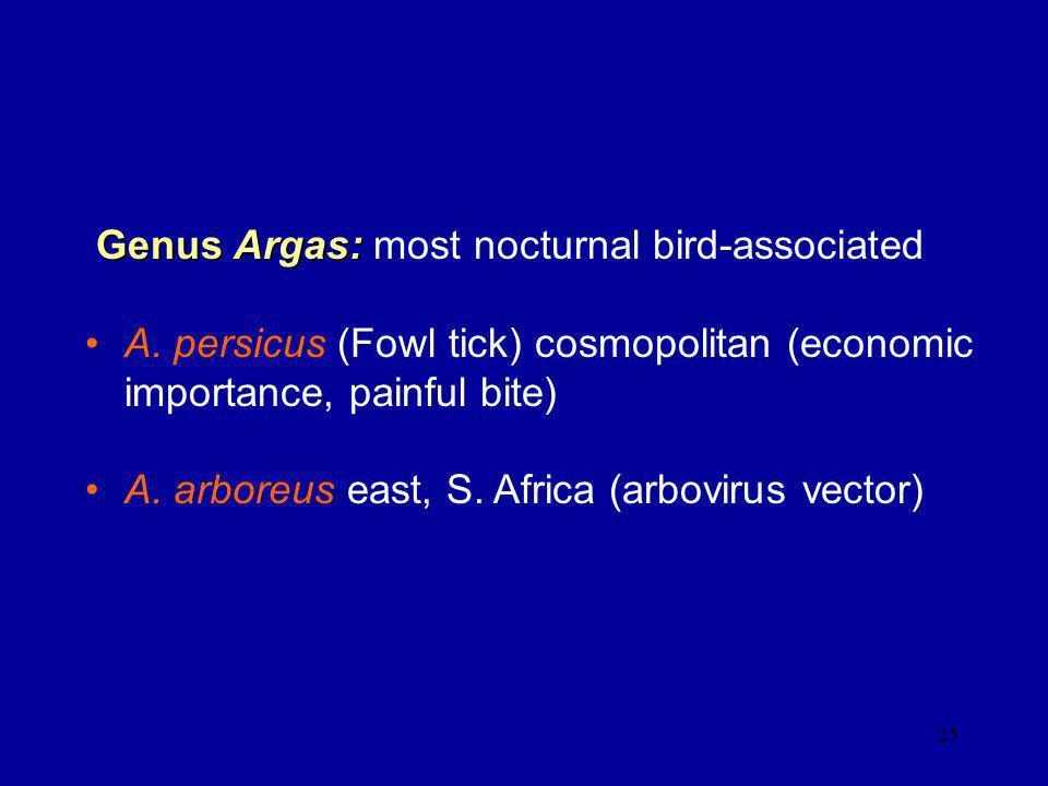 Genus Argas: most nocturnal bird-associated