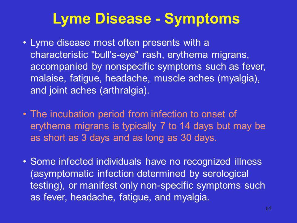 Signs of Lyme Disease - Bing images