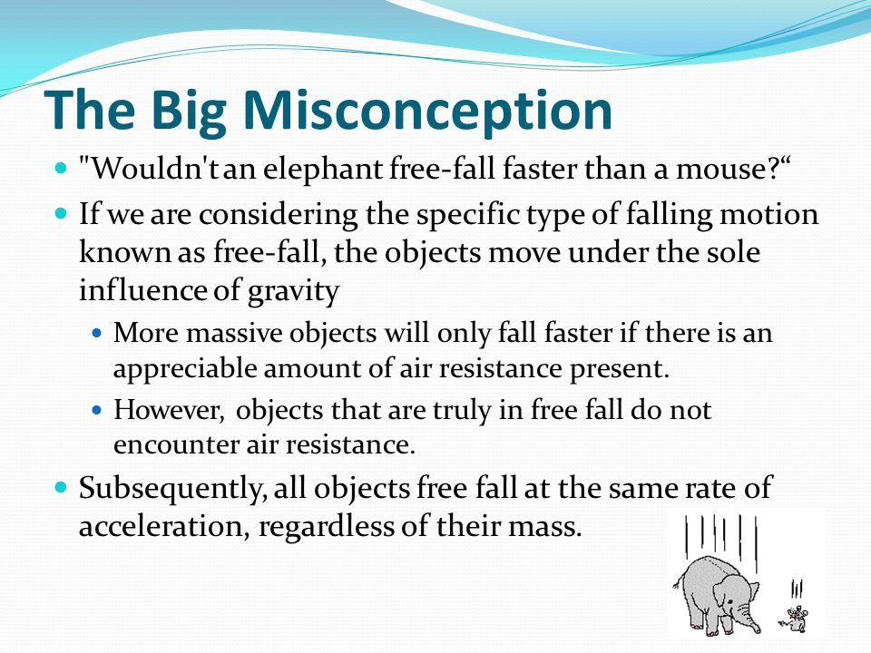 The Big Misconception Wouldn t an elephant free-fall faster than a mouse