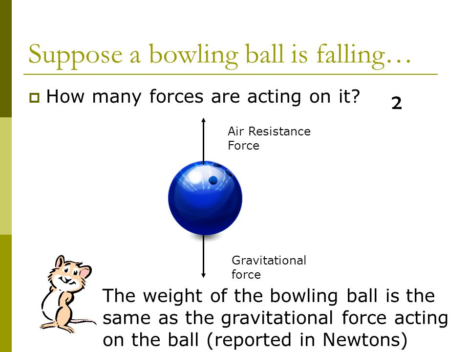 motion of a free falling body pdf
