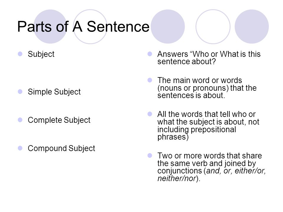 how to use the word either in a sentence