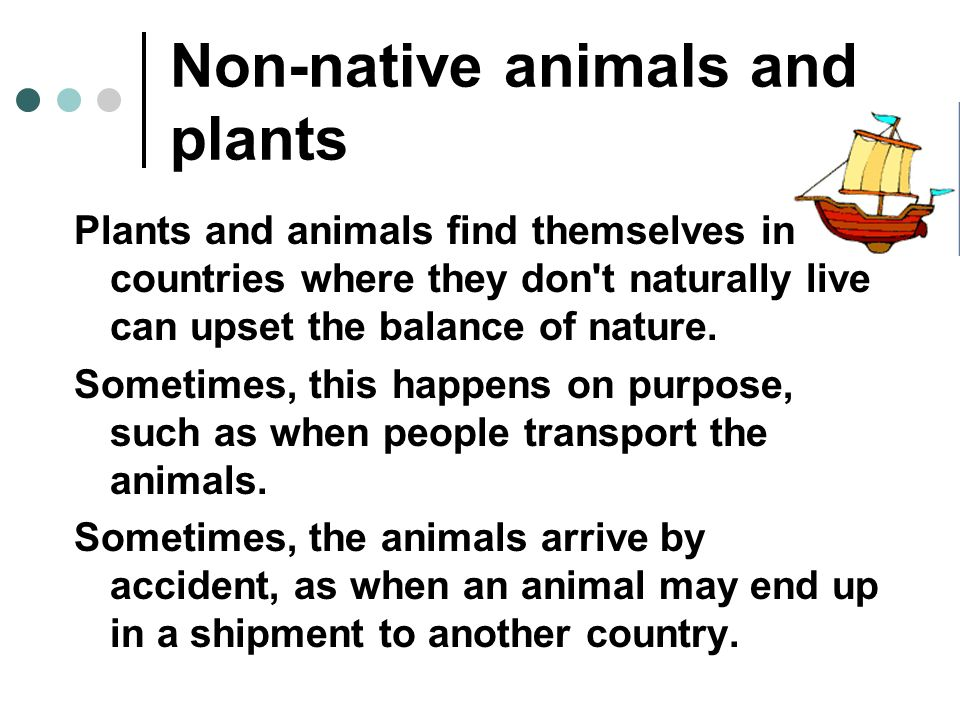 Non-native animals and plants