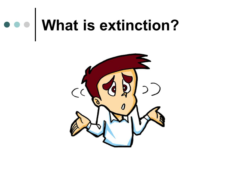 What is extinction