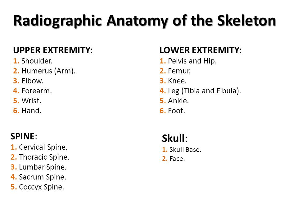 Radiographic Anatomy of the Skeleton