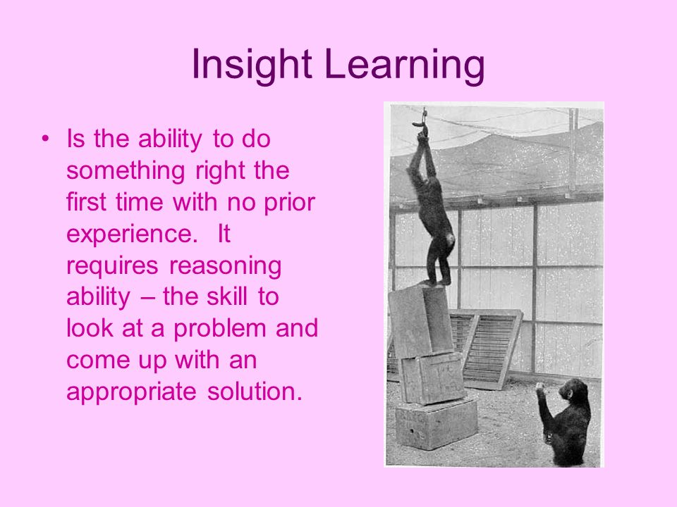 insight learning Career-long commitment to insight learning and public education: dr ronzio applied insight learning to develop community outreach programs in science he incorporated principles of insight problem solving for graduate courses in biochemistry and nutrition.
