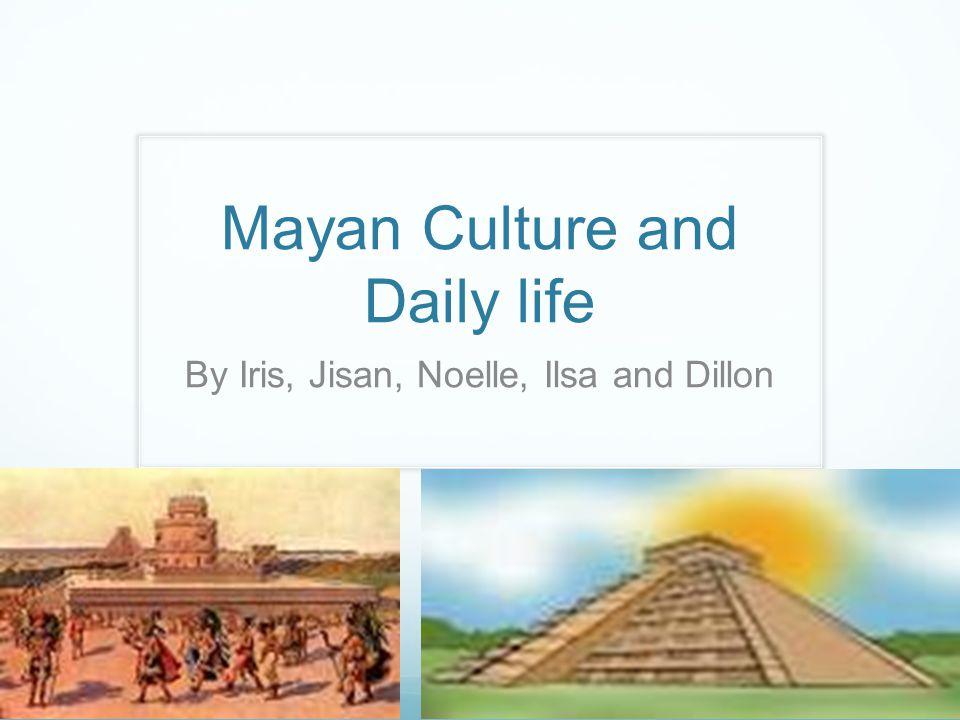 download Didymi Taurinensis Literaturae