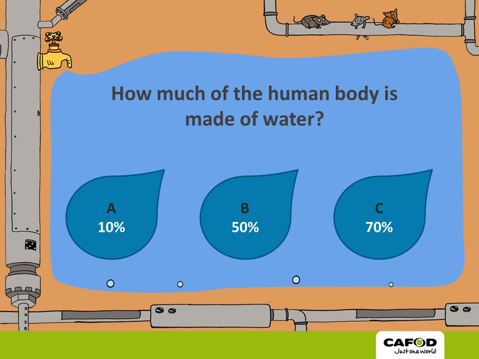 How Much Water Is In The Human Body